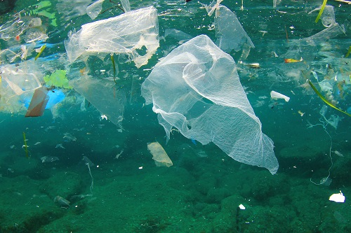 plastic bags environment Banning plastic bags isn't just bad economics—it's bad for the environment  measures that intuitively sound sensible might turn out to produce.